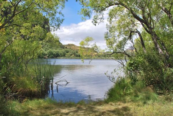 Diamont lake, Moke lake